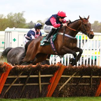 watt fences hurdles 3